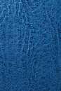 Free Blue Leather Royalty Free Stock Images - 16829579