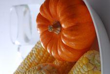 Free Pumpkin Royalty Free Stock Photos - 16821578