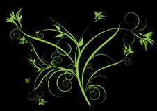 Free Green Decorative Flowers Stock Photography - 16828662