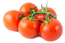 Free Tomatoes Stock Photography - 16829212