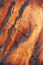 Free Burn Wood Texture Stock Photo - 16837580