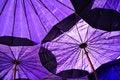 Free Under Blue Umbrella Stock Photos - 16839393