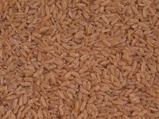 Free Long Grain Brown Rice Royalty Free Stock Photos - 16830488