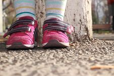 Free Sneakers On The Feet Of The Child Royalty Free Stock Photos - 16831768