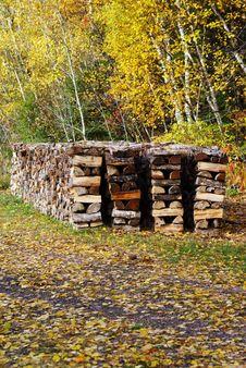 Free Woodpile Stock Photography - 16834632
