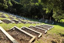 Free Historic Boer War Cemetery On St Helena Island Royalty Free Stock Photos - 16836528