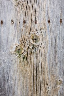 Free A Wooden Fence With Nails Stock Image - 16837261