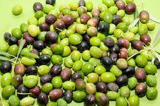 Free Olives Royalty Free Stock Photo - 16838095