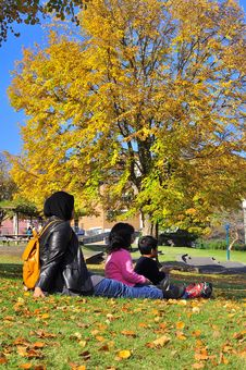 Family Picnicking While Watching Autumn Foliage Royalty Free Stock Images