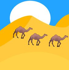 Free Camels Go On Desert Royalty Free Stock Image - 16839446