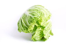 Free Fresh Cabbage Royalty Free Stock Images - 16839929