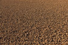 Free Freshly Ploughed Acre Royalty Free Stock Photography - 16840337