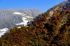 Free Autumn Landscape Stock Photos - 16840473