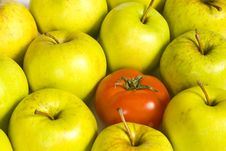 Free One Tomato And Apples Royalty Free Stock Images - 16841289
