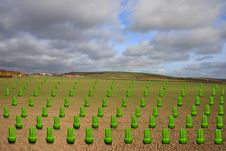 Free Green Energy Bulbs Growing In A Field Stock Photo - 16841380