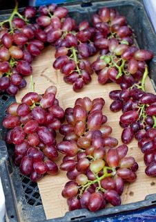Free Grapes Royalty Free Stock Images - 16841709