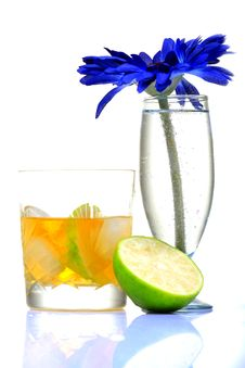 Free Tropical Whiskey Stock Photography - 16844062
