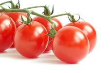 Free Cherry Tomato Stock Photo - 16844360