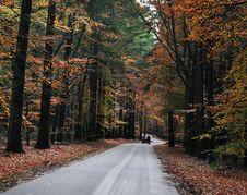 Free Autumn Road Stock Photo - 16845220