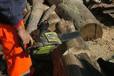 Free Lumberjack 023 Royalty Free Stock Photo - 16845355