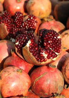 Free Pomegranate Stock Images - 16845564