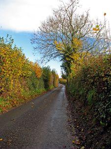 Free Rural Road Royalty Free Stock Photos - 16846328