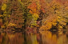 Free Fall Colors Reflecting Stock Images - 16846674