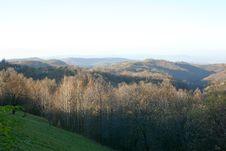 Free Rudnik Mountain Stock Photography - 16846872