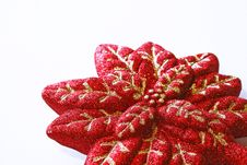 Free Christmas Decoration, Red Poinsettia Stock Photography - 16846922