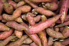 Free Sweet Potato Stock Image - 16848101