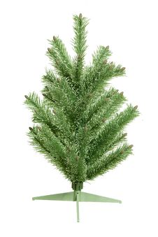 Free Fir-tree Stock Image - 16849521