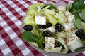 Free Greek Salad Royalty Free Stock Photography - 16850407