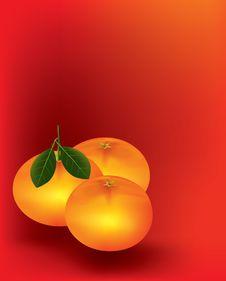Free Mandarine Orange Stock Photos - 16850553