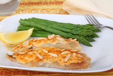 Free Fish Fillets And Asparagus Royalty Free Stock Images - 16852079