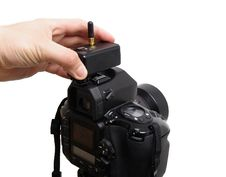 Free Camera With Radio Trigger Stock Image - 16855931