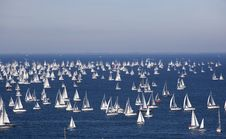 Free Barcolana, The Trieste Regatta Stock Images - 16856144