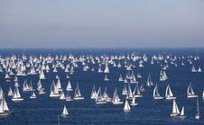 Barcolana, The Trieste Regatta Stock Images