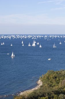 Free Barcolana, The Trieste Regatta Stock Photography - 16856162