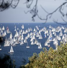 Free Barcolana, The Trieste Regatta Stock Images - 16856314