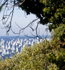 Free Barcolana, The Trieste Regatta Stock Photo - 16856320