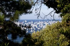 Free Barcolana, The Trieste Regatta Royalty Free Stock Image - 16856336