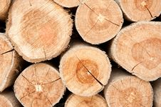 Free Wood Lumber Background Royalty Free Stock Photo - 16859155