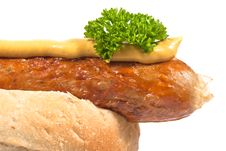 Free Sausage In A Roll V3 Stock Image - 16859311