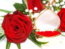 Free Red Rose And Wedding Ring Royalty Free Stock Images - 16859959