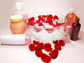 Free Spa Hair Mask Tonic Essences Liquid Soap Stock Images - 16864744