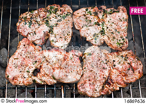 Free Grill Meat V1 Royalty Free Stock Image - 16869636