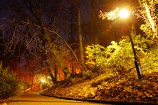 Free Park In The Autumn Season Royalty Free Stock Photo - 16860205