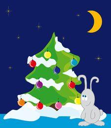 Rabbit Under The Christmas Tree Royalty Free Stock Photography