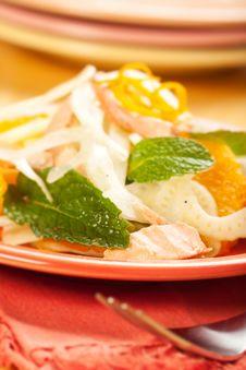 Salmon Fennel And Orange Salad Stock Images