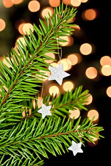 Free Fir Branch With The Stars. Stock Images - 16861864